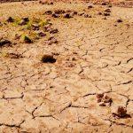 脱水がまねく恐ろしい病気たちと対応方法4つ